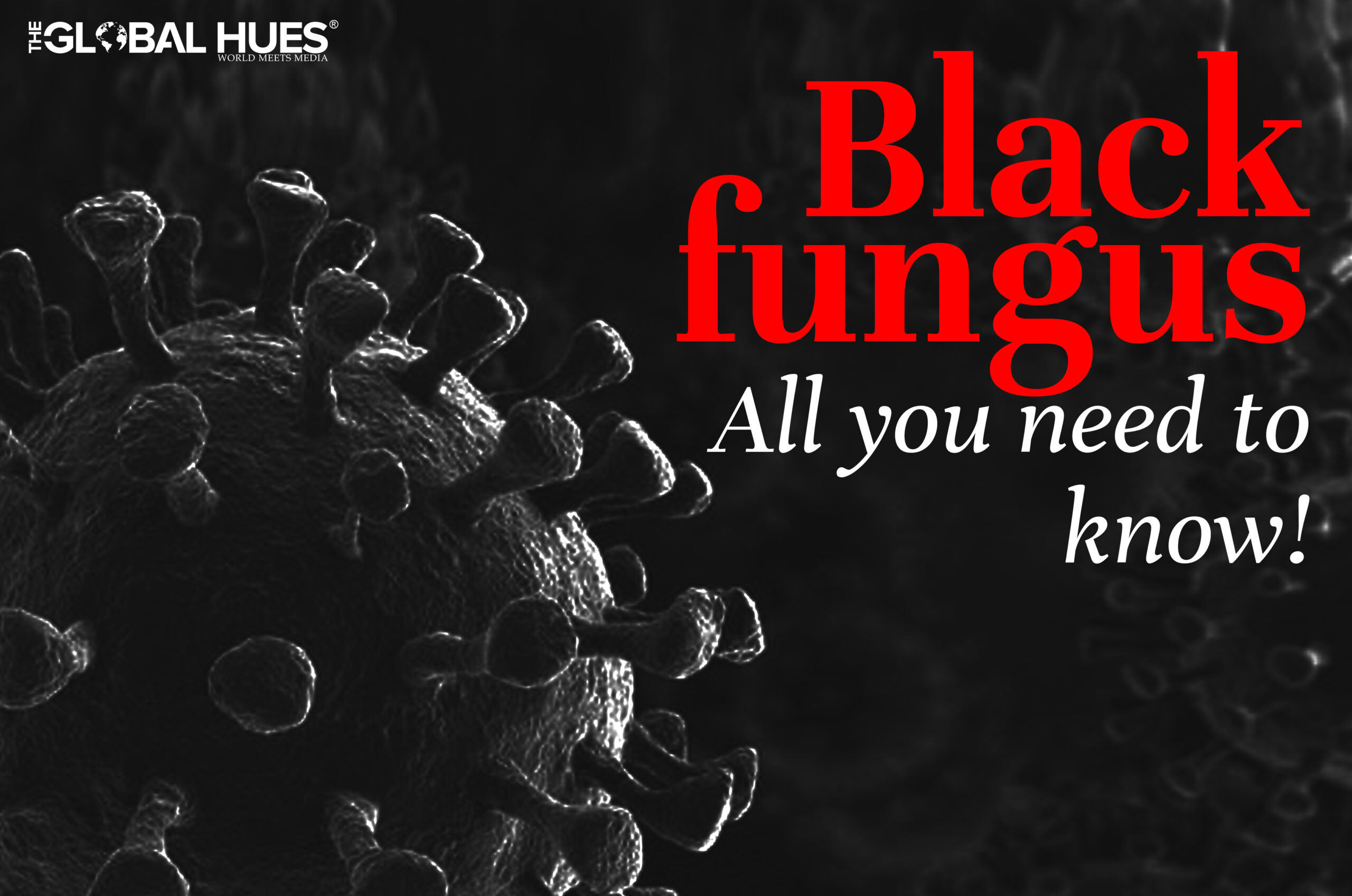 Black-fungus-All-you-need-to-know